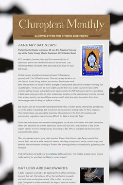 Chiroptera Monthly
