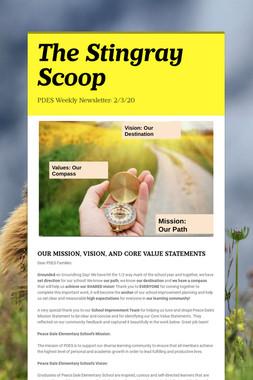 The Stingray Scoop