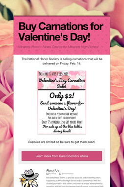 Buy Carnations for Valentine's Day!