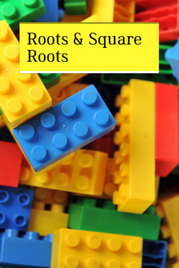 Roots & Square Roots