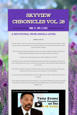 Skyview Chronicles Vol. 28