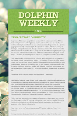 Dolphin Weekly