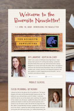 Welcome to the Boomsite Newsletter!