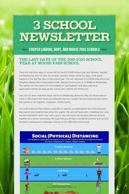 3 School Newsletter