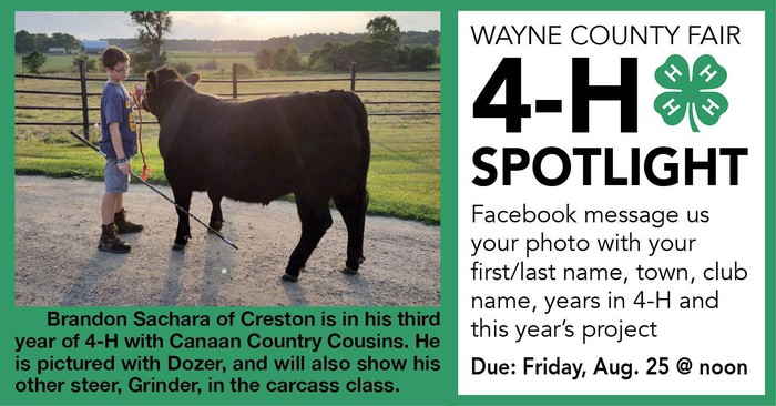 Wayne county 4 h news and notes the post newspapers 4 h member spotlight thecheapjerseys Choice Image