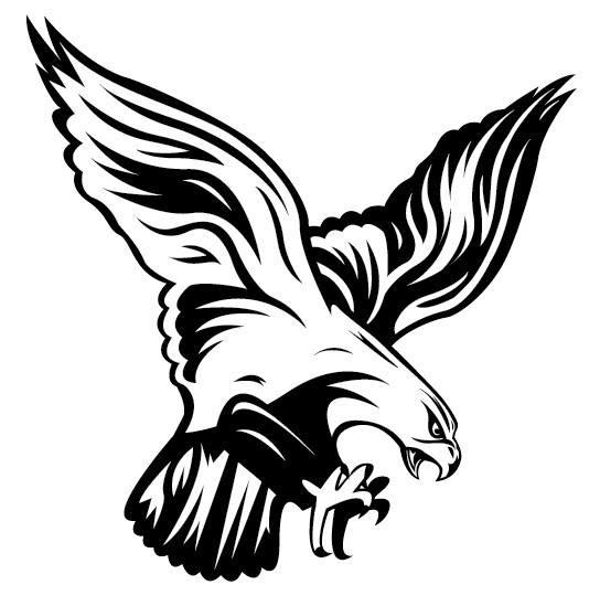 The Falcon Report