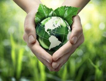 Recent Community Newsletter regarding Environmental Testing