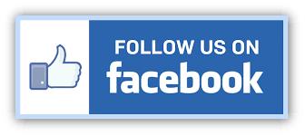 Follow the Parish Picnic on Facebook at @borromeoparishpicnic