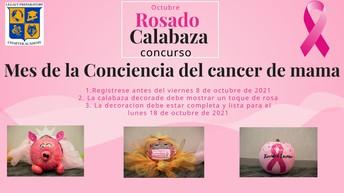 Octubre Rosado Calabaza concurso