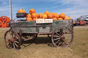 Tate Farms Field Trip (Oct 14)