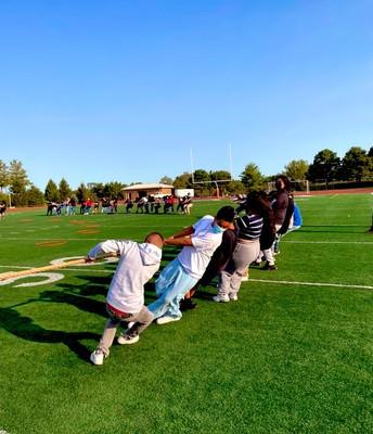 Academies in Action