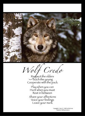 """""""For the strength of the wolf is the pack and the strength of the pack is the wolf."""""""