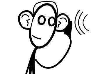 Hearing Vans - Tuesday