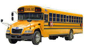 Activity Buses