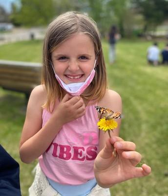 Grade 3 Butterflies