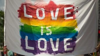 Happy Pride! ¡Feliz Orgullo a todos!