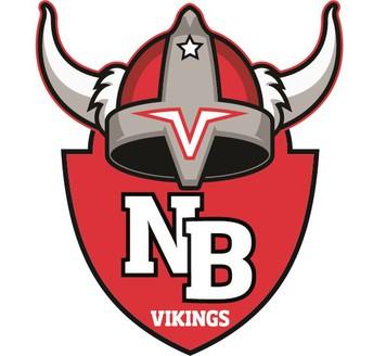 Viking Youth Football Sign up