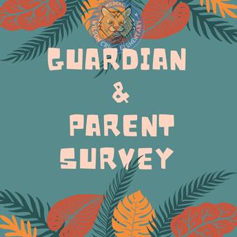School Counselor Survey