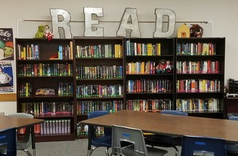 Pre-K to Grade 5 Classroom Library Equity Project