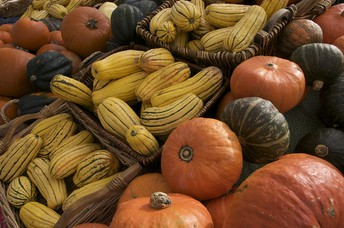 Fall Produce to add to your Plate!