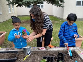 Kinders gardening
