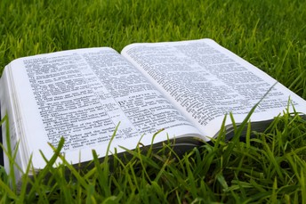 Sunday's Order of Worship and Scriptures