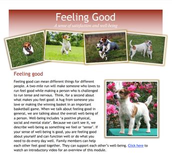 InPACTatHome Family Engagement Module: Feeling Good