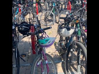 More Gunn Students Choose To Bike