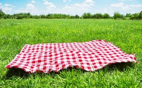 Bring a Towel to Lunch!