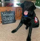 Welcome Charlie!
