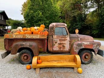 Laurels Pumpkin Barn