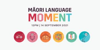 Māori Language Moment