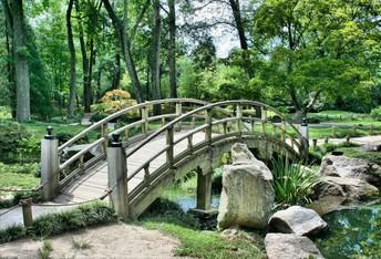 Extraordinary Gardens!