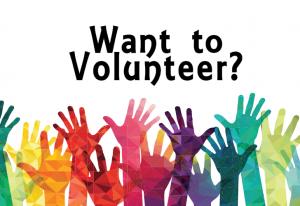 Volunteer Opportunities at Stopher