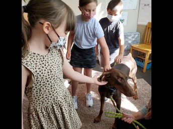 Mrs. Maxwell's 3rd Graders Visited by The Humane Society