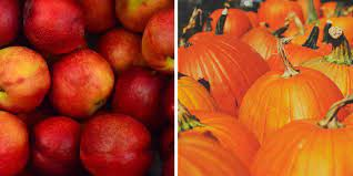 Health & Fitness Tip:  Eat More of Nature's Harvest...Apples and Pumpkins