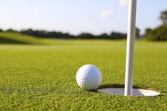 Calling all Golf Fans!