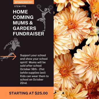 Homecoming Mums for Sale