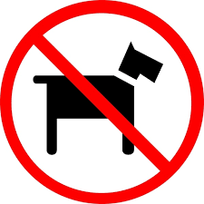 Please NO DOGS on campus