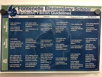 Fantastic Falcon Guidelines