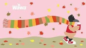 HSO Wawa Fundraiser