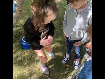 Kindergarten Students deep into Learning