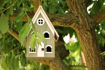 Create a Birdhouse