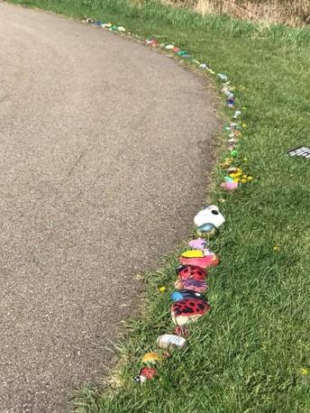 Kindergarten & Community Connections