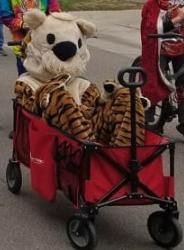 Coronado Homecoming Parade!