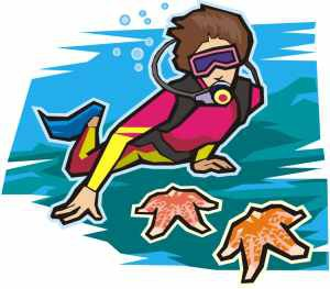 Grades 3rd-5th: Marine Biologist