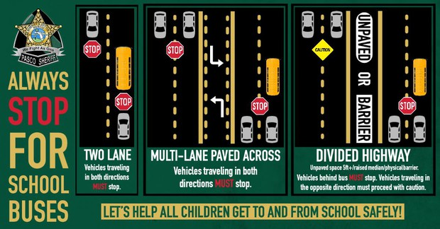 Infographics showing when to stop for school buses