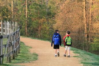 Pre-K-2: Taking a Mindful Walk Outside