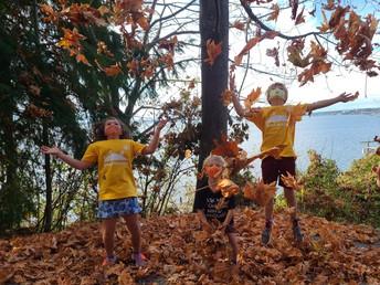 YMCA Trail Blazers