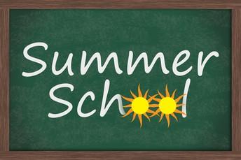 Looking for Summer School Opportunities?